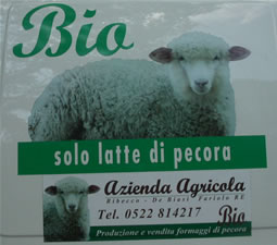 Azienda Agricola the sheeps cheese maker